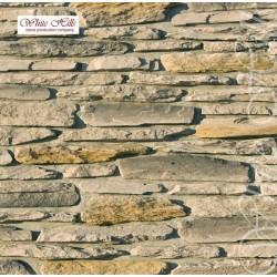 Айгер 540-80